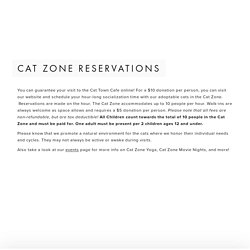 Cat Town Cafe — Cat Town