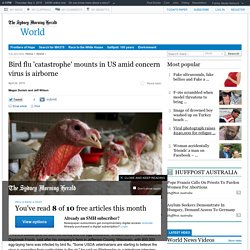 Bird flu 'catastrophe' mounts in US amid concern virus is airborne