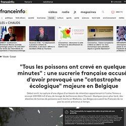 """""""Tous les poissons ont crevé en quelques minutes"""" : une sucrerie française accusée d'avoir provoqué une """"catastrophe écologique"""" majeure en Belgique"""