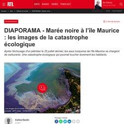 DIAPORAMA - Marée noire à l'île Maurice : les images de la catastrophe écologique