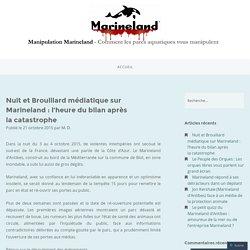 Nuit et Brouillard médiatique sur Marineland : l'heure du bilan après la catastrophe