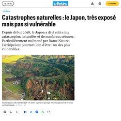 Catastrophes naturelles : le Japon, très exposé mais pas si vulnérable