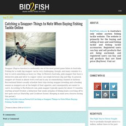 Catching a Snapper: Things to Note When Buying Fishing Tackle Online