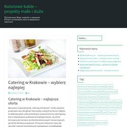 Catering w Krakowie - wybierz najlepiej - Kolorowe kable - projekty małe i duże
