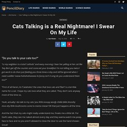 Cats Talking is a Real Nightmare! I Swear On My Life