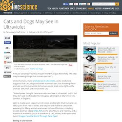 Cats and Dogs May See in Ultraviolet
