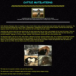 Cattle Mutilations