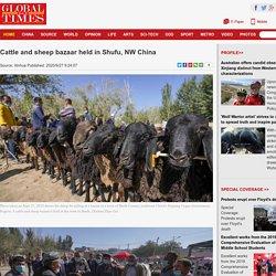 Cattle and sheep bazaar held in Shufu, NW China - Global Times