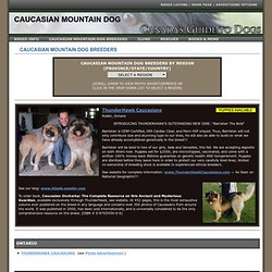 Caucasian Mountain Dog Breeders - English Bulldogs - Canada's Guide to Dogs - Working Dog Breeds