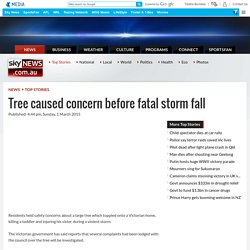 Tree caused concern before fatal storm fall