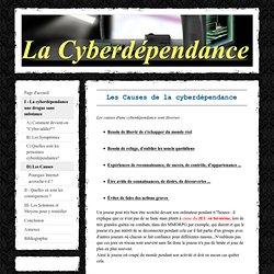 D) Les Causes - La cyberdépendance TPE 2009-2010