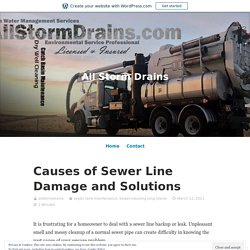 Causes of Sewer Line Damage and Solutions