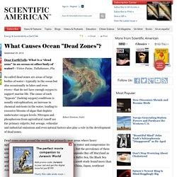 "What Causes Ocean ""Dead Zones""?"