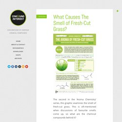 What Causes The Smell of Fresh-Cut Grass?