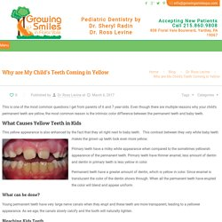 What Causes Yellow Teeth? My Child Has Yellow Teeth, Treatment