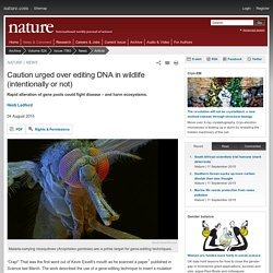 Caution urged over editing DNA in wildlife (intentionally or not)