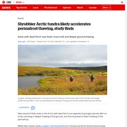 arctic-tundra-permafrost-thaw-shrub-1
