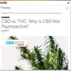 CBD vs. THC: Why Is CBD Not Psychoactive?