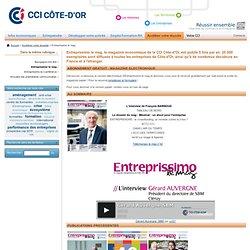 CCI - Développement Entreprise : Entreprendre en Bourgogne - Information Economie - Données Economiques - CCI Côte-d'Or