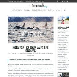 Ce jour avec les Orques en Norvège du Nord