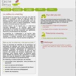 Cécile Deruy - consultante e-learning