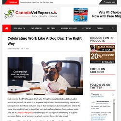 Celebrating Work Like A Dog Day, The Right Way