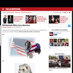 50 Animals Who Love America
