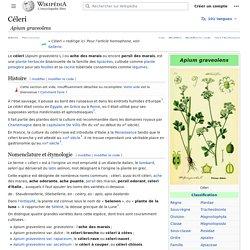 WIKIPEDIA – Celeri.