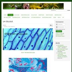 CELLULE - BIO-WEB - JPH.BOSERET