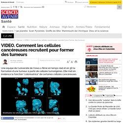 VIDEO. Comment les cellules cancéreuses recrutent pour former des tumeurs