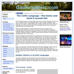 Celtic Language - Irish Gaelic, Scottish Gaelic and Welsh