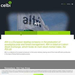 Celulose Beira Industrial (Celbi) SA - Altri