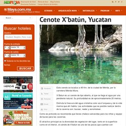 Cenote X'batún, Yucatan