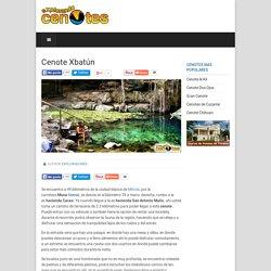 Explorando Cenotes