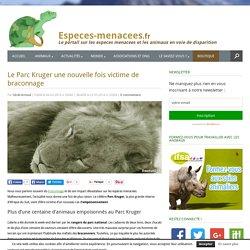 Parc Kruger : une centaine d'animaux tués par empoisonnement