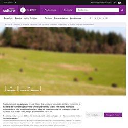 FRANCE CULTURE 29/11/20 SUPERFAIL - Des centaines de milliers de sangliers en France : le grand remplacement