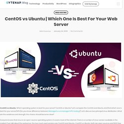 Which One Is Best For Your Web Server