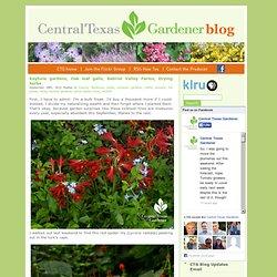 Central Texas Gardener Blog » Blog Archive » Keyhole gardens, Oak leaf galls, Gabriel Valley Farms, Drying herbs
