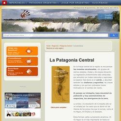 Región Central y Meseta - PATAGONIA ARGENTINA