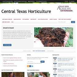 Central Texas Gardening