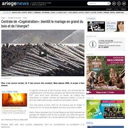 Centrale de «Cogénération» le mariage en grand du bois et de l'énergie? 02/04/2012