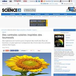 Des centrales solaires inspirées des tournesols