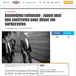 Assemblée nationale : Juppé veut des centristes pour diluer les sarkozystes