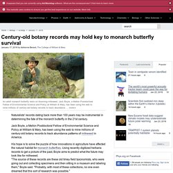 Century-old botany records may hold key to monarch butterfly survival