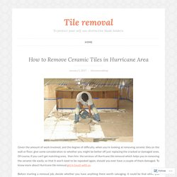 Hurricane Tile Removal