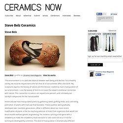 Steve Belz Ceramics