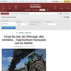 Crise du lait, de l'élevage, des céréales… l'agriculture française est en faillite