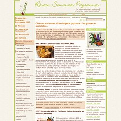 Céréales anciennes et boulangerie paysanne