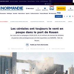 Les céréales ont toujours le vent en poupe dans le port de Rouen - Économie - Paris Normandie