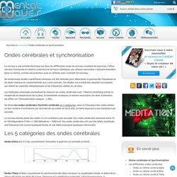 ARTICLE Ondes cérébrales et synchronisation (site Mental Waves)